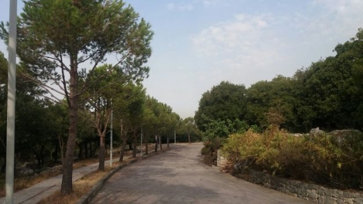 Land in Shananeir - Land For sale in chnaneir