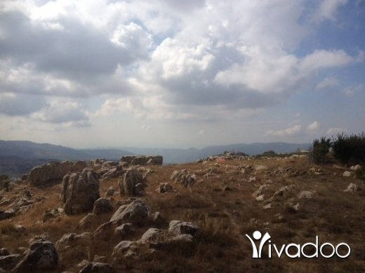 Land in Tarchich - Well Located Land For Sale In Tarchich With a Splendid View - L04383