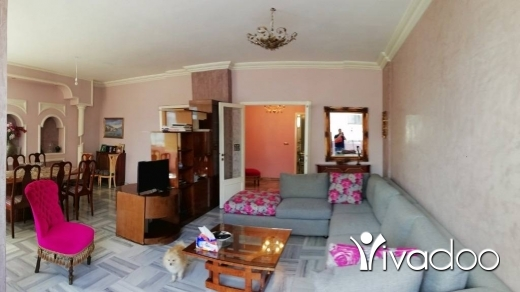 Apartments in Achrafieh - L04816  Furnished Apartment For Rent in Achrafieh Sioufi