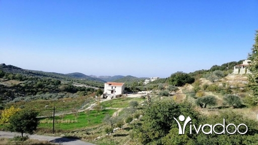 Land in Mechmech - Land for Sale Mechmech Jbeil Area 1400Sqm