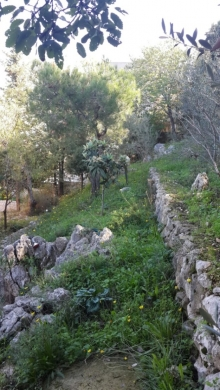 Land in Nabay - Land with Building for Sale in Nabay