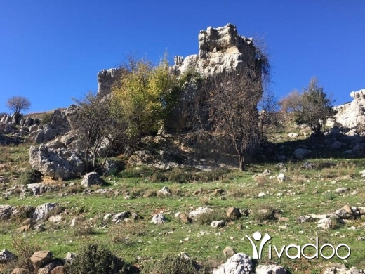 Land in Mayrouba - A 4000 m2 land for sale in Mayrouba