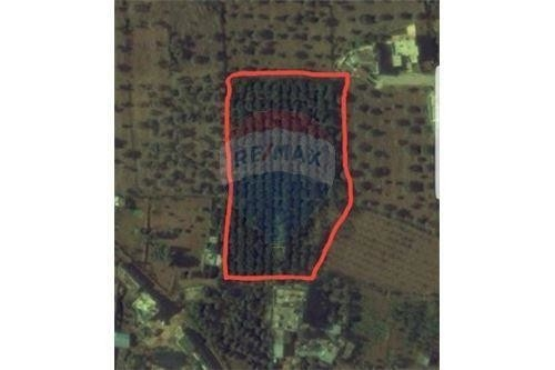 Land in Zgharta - Land for Sale in Kfardlaous, Zgharta