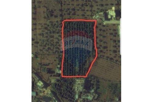 Land in Zgharta - Land for Sale in Kfardlaous, Zgharta