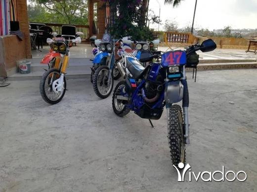 Motorbikes & Scooters in Nabatyeh - Suzuki dr