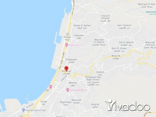 Land in Antelias - A 1000 m2 land for sale in Ant Elias Seaside - Prime location