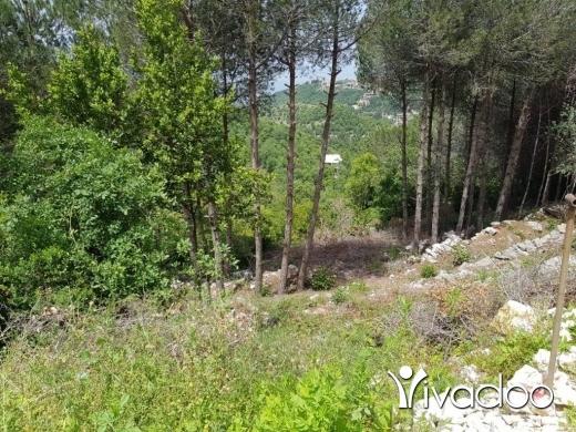 Land in Ghedras - L06742- Land for Sale in Ghedras