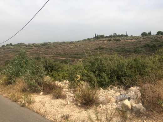 Land in Batroumine - Land for sale in Batroumine, North Lebanon.