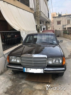 Mercedes-Benz in Akoura - E 230 1981