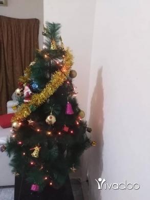 Health & Beauty in Zouk Mikaël - شجرة عيد الميلاد