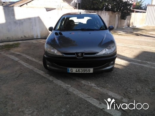 Peugeot in Akoura - Peugeot 206
