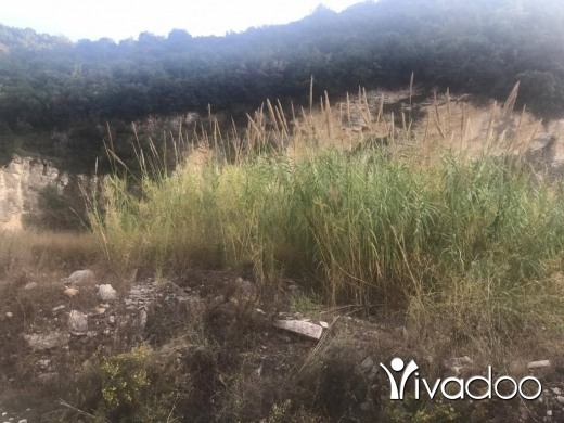 Land in Halate - L07372- Land for Sale in Halat with Open Mountain View