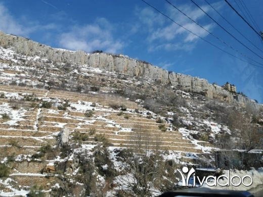 Land in Faraya - A 800 m2 land with a mountain view  for sale in Faraya