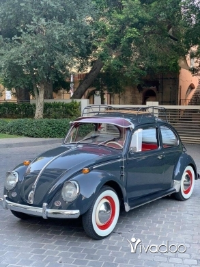 Volkswagen in Beirut City - Volkswagen Beetle 1965