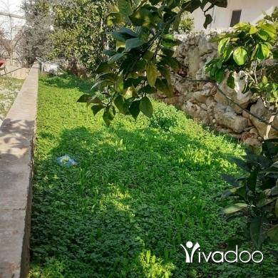Plot in Tripoli - عقار للبيع بيت مع ارض