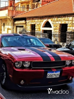 Dodge in Tripoli - Dodge challenger 2013