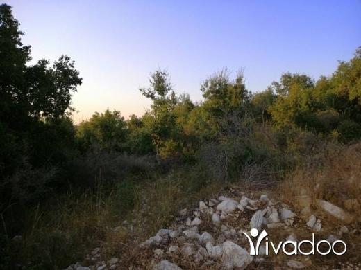 Land in Bejje - Land for Sale Bejjeh Jbeil Area 1118Sqm