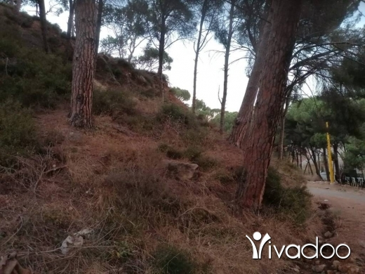 Land in Koneitra - L07548 - A rare opportunity! Land for Sale in Konaytra - Bankers Check Accepted