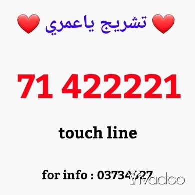 Phones, Mobile Phones & Telecoms in Saida - new line touch & alfa recharge for info : 03734327