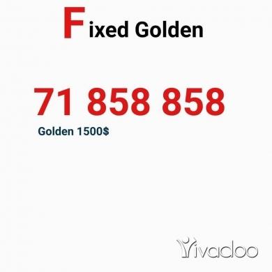 Phones, Mobile Phones & Telecoms in Haret Saida - Bronze numbers 70022225