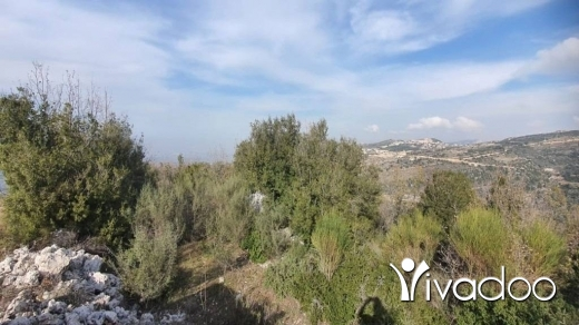 Land in Bshaalah - Land for Sale Bchaaleh Batroun Area 1506Sqm
