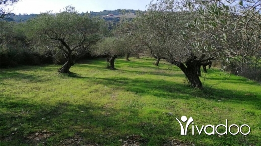 Land in Amchit - Land for Sale Ain Kfaa Jbeil Area 6400Sqm