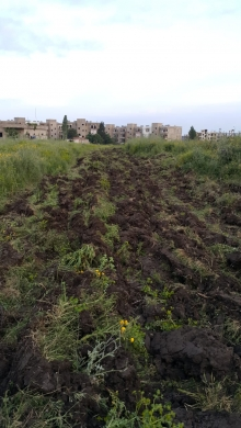 Land in Halba - Land for sale in Halba, Akkar