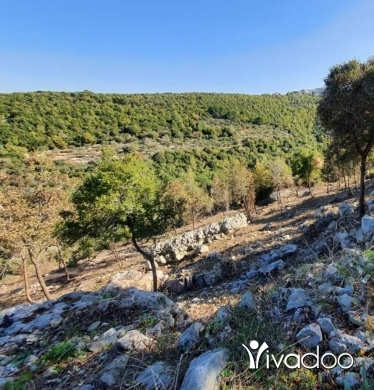 Land in Souret - L05988 Land for Sale in Sourat Batroun