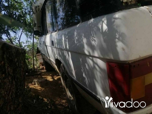 Rover in Saida - رانج روفي
