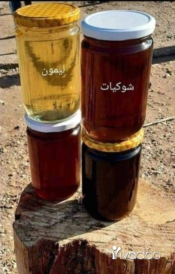 Food & Drink in Saida - عسل