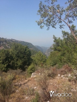 Land in Mayassa - land 1000m² for sale in myeseh