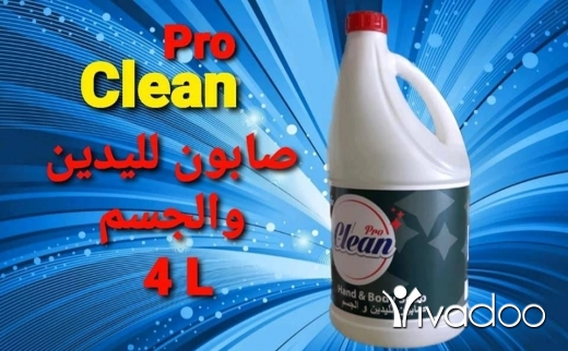 House Clearance in Beirut City - ProClean