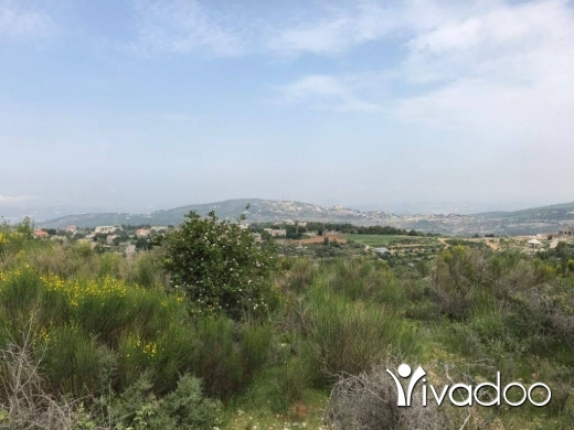 Land in Hadtoune - land for sale