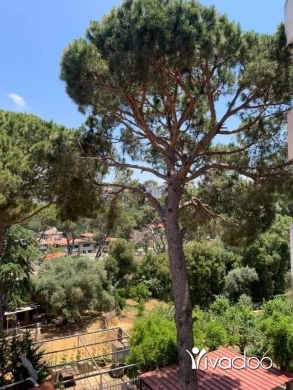 Apartments in Broumana - Furnished Apartment For Rent Broumana