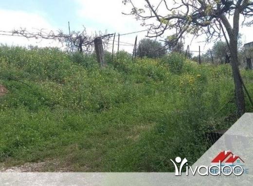 Land in Zgharta - ارض للبيع زغرتا منطقة عردات