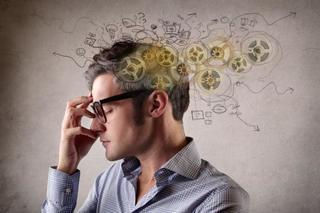 Brain cogs learning