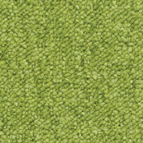 5071 Lime