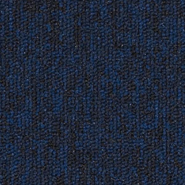 5595 Navy