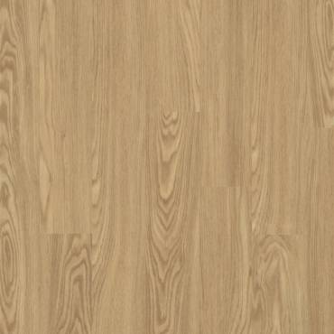 50-LVP-207 Rocky Mountain Oak