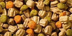 Pedigree® Ist Ihr Hund wählerisch beim Essen?