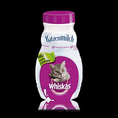 Katzen Milch