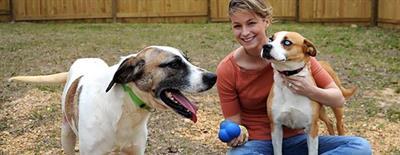 Een nieuwe thuis voor een asielhond