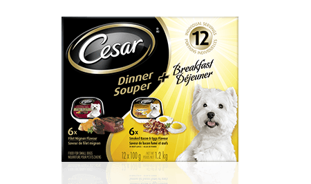 CESAR® DINNER + BREAKFAST: 6 FILET MIGNON FLAVOUR DINNER + 6 SMOKED BACON & EGGS FLAVOUR BREAKFAST 12x100g