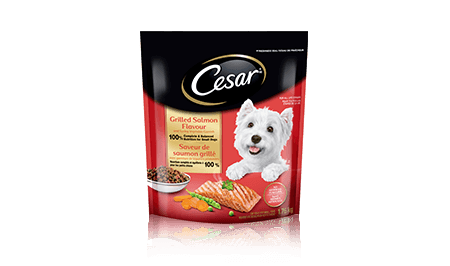 CESAR® Grilled Salmon Flavour and Spring Vegetable Garnish