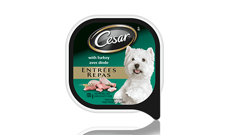 CESAR® ENTRÉES: WITH TURKEY 100g