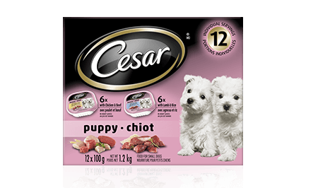 CESAR® PUPPY CANINE CUISINE: 6 LAMB & RICE + 6 CHICKEN & BEEF 12x100g