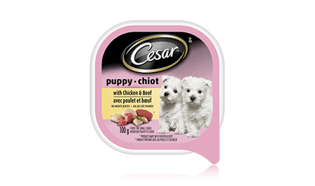 CESAR® PUPPY CANINE CUISINE WITH CHICKEN & BEEF IN MEATY JUICES 100g