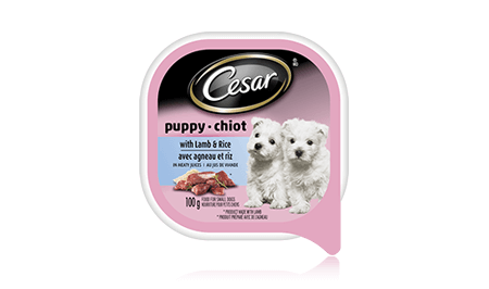 CESAR® PUPPY CANINE CUISINE WITH LAMB & RICE IN MEATY JUICES 100g