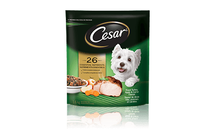 CESAR® Roast Turkey, Apple and Carrot Flavour Food For Small Dogs