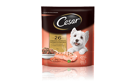 CESAR® Salmon & Brown Rice Flavour Food For Small Dogs